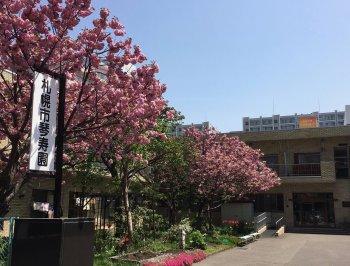軽費老人ホームB型 札幌市琴寿園